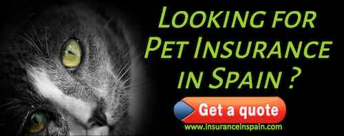 cheap insurance in spain for cats dogs puppies kittens
