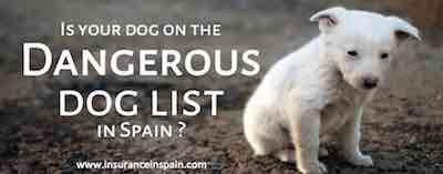 dangerous dog insurance in spain pet insurance dangerous dog list