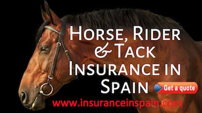 horse insurance in spain and europe covering tack the rider and veterinary