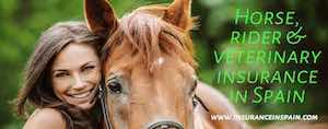 horse insurance Spain with rider liability + veterinary insurance