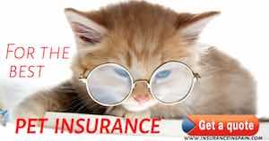 best pet insurance in spain pet plans vets cats dogs protectapet