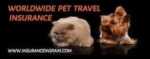 Worldwide pet travel insurance exclusive to www.insuranceinspain.com