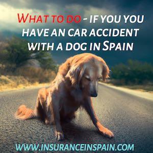 Pet insurance in Spain, portugal, gibraltar, greece, cyprus