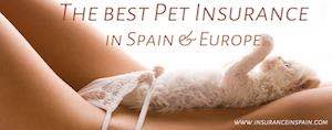 pet insurance in spain pet plans and pet healthcare insurance