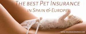 pet plan insurance in spain