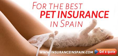 best pet insurance and pet plans in spain in english