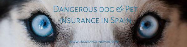 pet insurance in spain for dangerous dogs pet liability insurance in spain