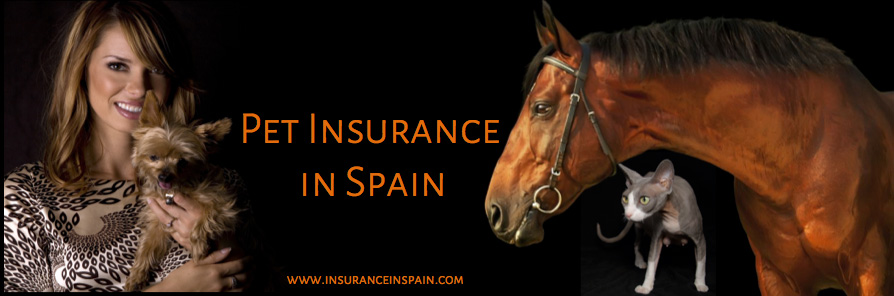 cheap pet insurance in spain for cats and dogs including dangerous dogs