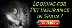 cheap pet insurance in spain gibraltar portugal for cats dogs puppies kittens