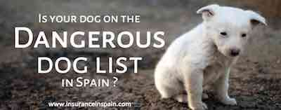 dangerous dog insurance in spain pet insurance dangerous dog list