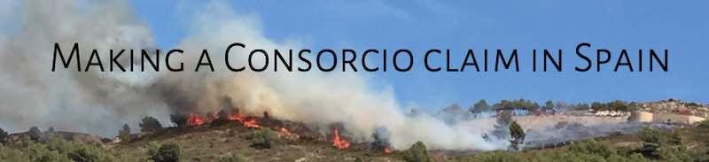 Fire on the hillside in Javea, Alicante, Spain