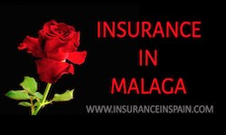Get insurance quotes in Malaga for Anything