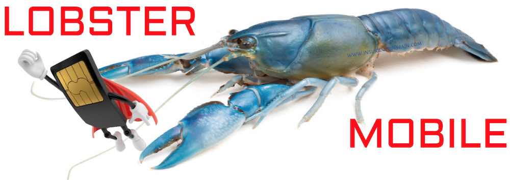 Lobster-mobile-services-Spain-UK-in-English