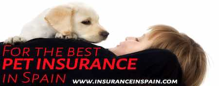 pet insurance in Spain pet plans cats dogs horses.